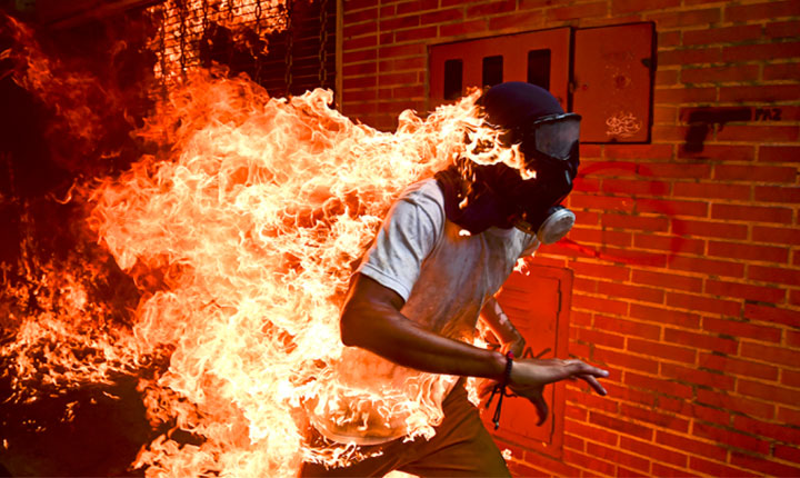 As fotos mais incríveis do ano, segundo o World Press Photo